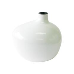 vaas wit vertu de vase