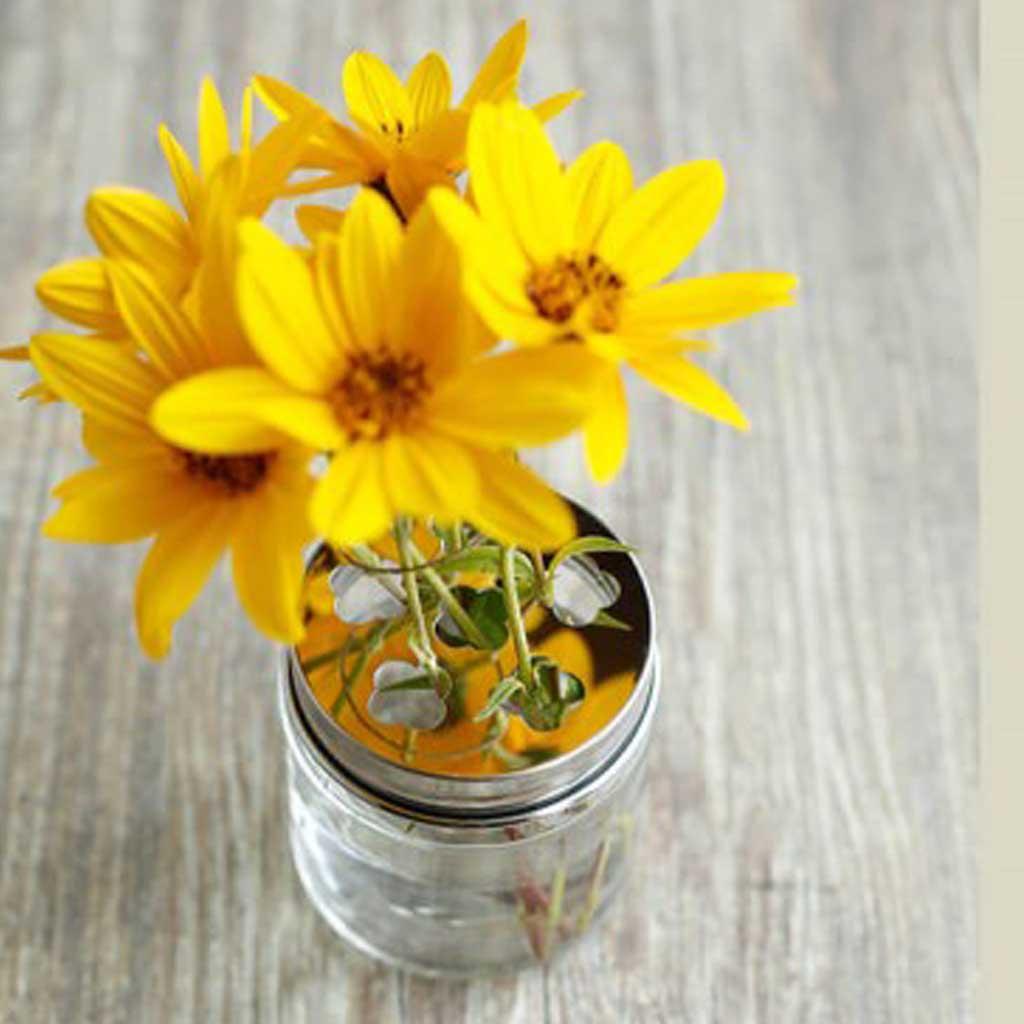 Bloemen In Pot.Happytappi Deksel Voor Bloemen 500 Ml Pot