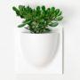 wandpot Vertiplants wit groot 30 x 30 cm