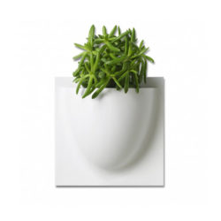 wandpot Vertiplants Mini 15 x 15 cm wit